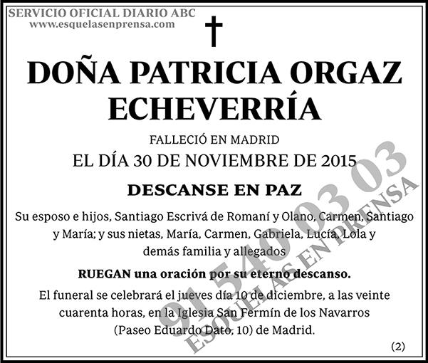 Patricia Orgaz Echeverría
